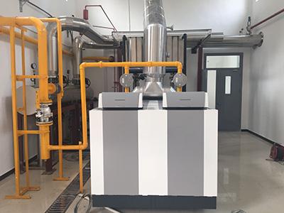 德地氏低氮冷凝锅炉